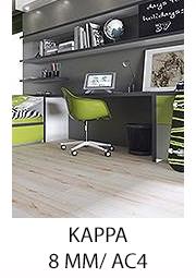 FERRUM KAPPA KRONOPOL